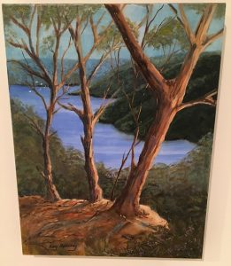 Kay Holliday's Burragorang Valley.