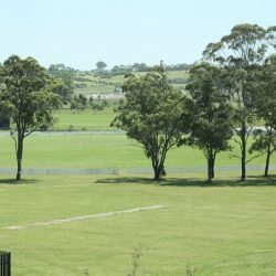 Hurlstone's farm land will be sold off to developers for housing, while the new school will be called Roy Watts High School.