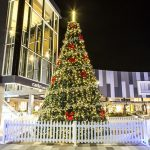 Camden Council - Christmas Tree Lights
