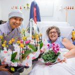 National Palliative Care Week
