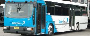 Interline Bus Services has agreed to reinstate the bus services along Pendergast Avenue and Elizabeth McRae Avenue, Minto.