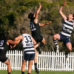 Camden Cats back home this weekend after hard fought win over Bats