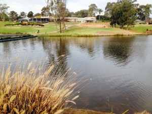 Number one: Campbelltown Golf Course at Glen Alpine.