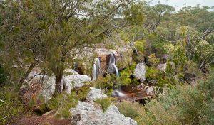 Maddens Falls, Dharawal National Park
