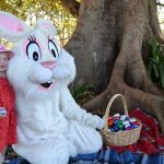 Yes, children, the Easter Bunny will be dropping in at Mawson Park, isn't that awesome.