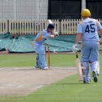 Batting woes: The Lions during their innings at Hurstville Oval on Saturday.
